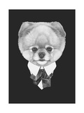 Portrait of Pomeranian Dog in Suit Hand Drawn Illustration