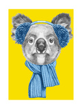Portrait of Koala with Scarf and Earmuffs Hand Drawn Illustration