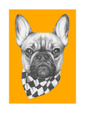 Original Drawing of French Bulldog with Scarf. Isolated on Colored Background Giclée premium par Victoria_novak