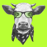 Portrait of Cow with Glasses and Scarf Hand Drawn Illustration