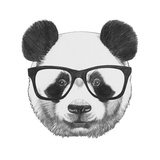 Original Drawing of Panda with Glasses Isolated on White Background
