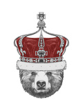 Original Drawing of Bear with Crown Isolated on White Background
