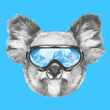 Portrait of Koala with Ski Goggles Hand Drawn Illustration