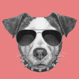 Original Drawing of Jack Russell with Collar and Sunglasses Isolated on Colored Background