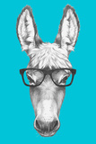 Portrait of Donkey with Glasses Hand Drawn Illustration