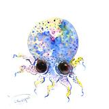 Baby Octopus Blue