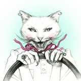 Crazy Cat in a Car Fashion Animal Watercolor Illustration