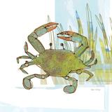 Marsh Crab