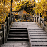 China 10MKm2 Collection - Chinese Bridge in Autumn