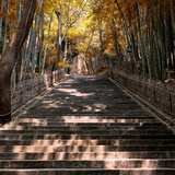 China 10MKm2 Collection - Stairs in Autumn
