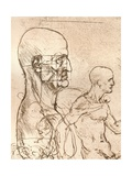 Drawing Illustrating the Theory of the Proportions of the Human Figure  C1472-C1519 (1883)