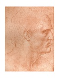 Study for the Head of St Matthew in the Last Supper  C1494-C1499 (1883)