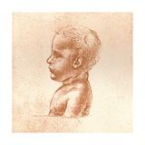 Bust of a Boy  C1472-C1519 (1883)
