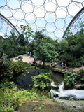 Inside the Humid Tropics Biome  Eden Project  Cornwall