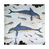 Minoan Wall-Painting of Dolphins Giclée par CM Dixon