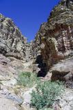 Walk to El Deir (The Monastery)  Petra  Jordan