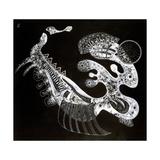 Black and White, 20th Century Giclée par Vassily Kandinsky