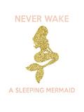 Never Wake a Sleeping Mermaid