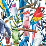 Watercolor Parrot Pattern