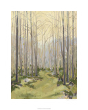 Delicate Forest I