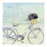 Biking Through Amsterdam