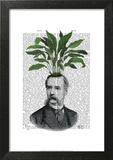 Aspidistra Head Plant Head