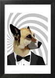 Debonair James Bond Dog