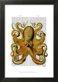 Vintage Yellow Octopus Front