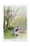 The Heron  La Fontaine's Fables