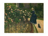 Roses in the Garden at Petit Gennevilliers  1886