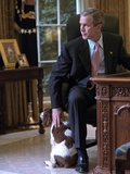 President George W Bush Pets Spot in the Oval Office of the White House Oct 1  2001