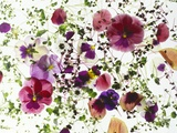 Edible Flowers and Sprouts