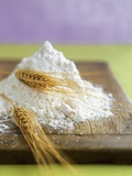 Flour and Wheat on Cutting Board