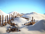 Still Life with Cinnamon Sticks  Nuts  in Sugar Desert