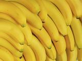 Several Fresh Bananas