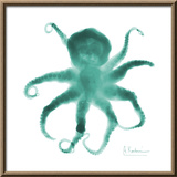 Teal Octopus