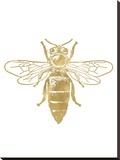 Bumblebee Golden White