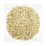 Burst in Gold Palette