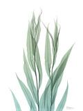 Radiant Bamboo Leaf 2