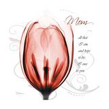 Tulip Head Mom
