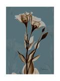 Deep Flora 2