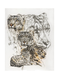 Snow Leopard and Ghost Image