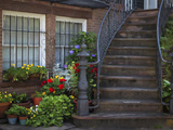 Townhouse Steps