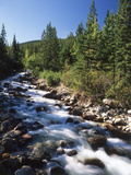 Canada  Alberta  Mountain Stream in Jasper National Park