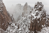 Snow  Huangshan or Yellow Mountains  Anhui Province  China