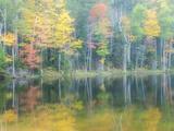 Michigan  Upper Peninsula Fall Colors on Thornton Lake  Alger Co