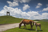 Bulgaria  Central Mts  Troyan  Troyan Pass  Battle Monument and Horses