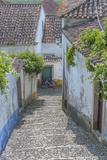 Europe  Portugal  Obidos  Cobblestone Steps