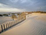 USA  South Carolina  Huntington Beach State Park