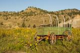 USA  South Dakota  Wild Horse Sanctuary Scenic with Vintage Wagon